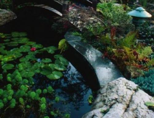Limestone Caprock Waterfall